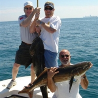 cobia_photo_2_exp