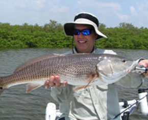 Enjoy a day of Redfish fishing in the shallow flats of west central Florida