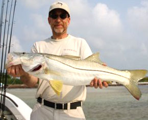 Spend the day fishing for the amazing Snook in Florida's Gulf Coast