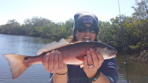 Allison caught lots of these Beautiful Redfish on one winter charter a few days ago!