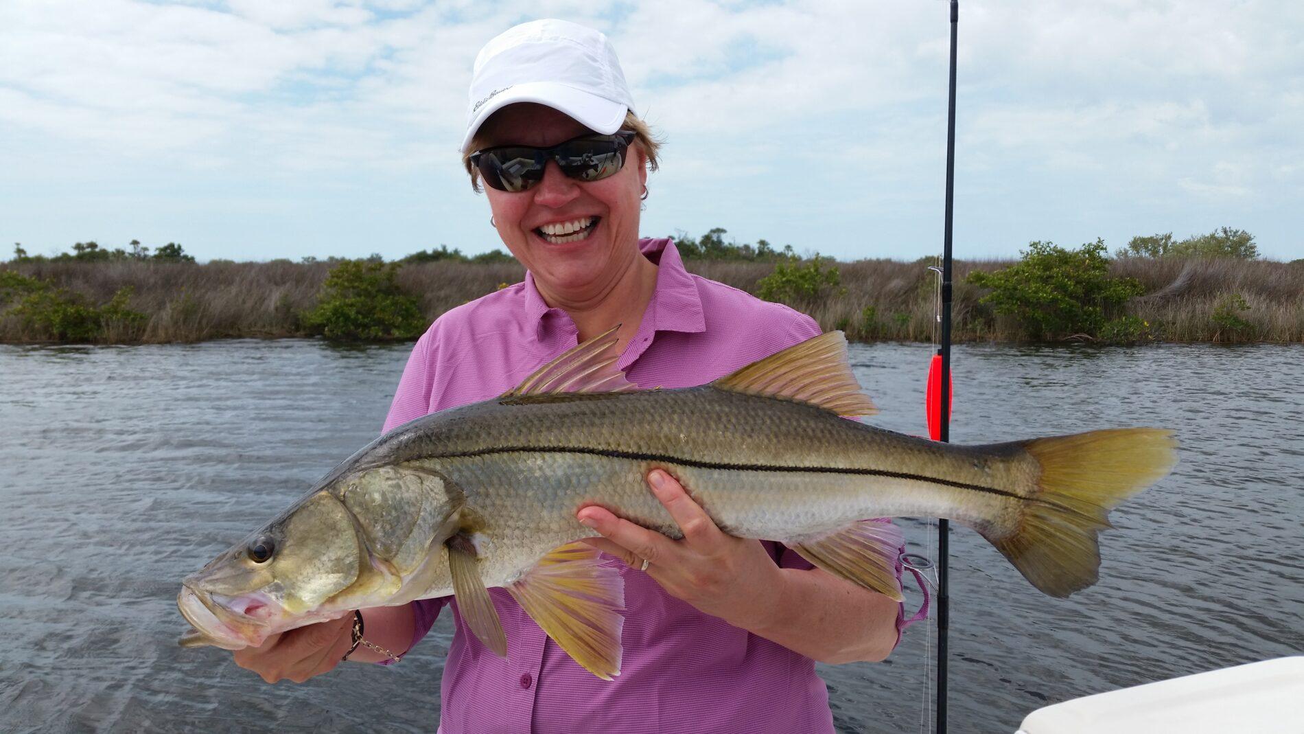 Snook season opens september 1st absolute florida for Florida fishing seasons