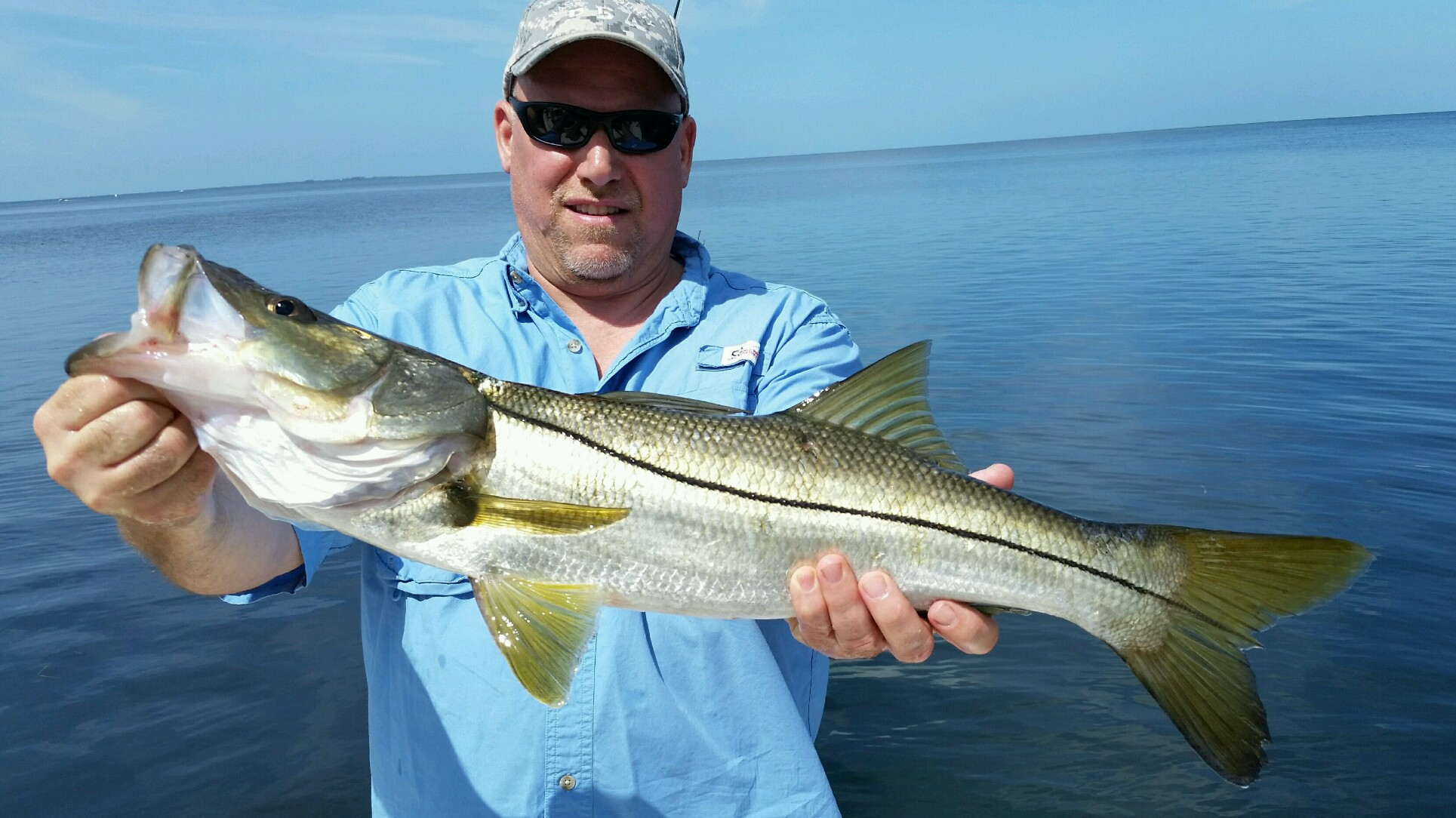 All florida flats fishing species on parade for Fish species in florida